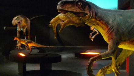 02. herrerasaurus