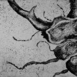 """Jessica Ferro, """"Cervo Volante"""", 2012, acquaforte, 9,5x17 cm"""