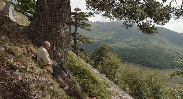 Michelangelo Frammartino. la scena del film dell'anziano pastore